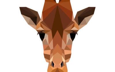 Retour d'image : le préférez-vous plutôt girafe ou chacal ?